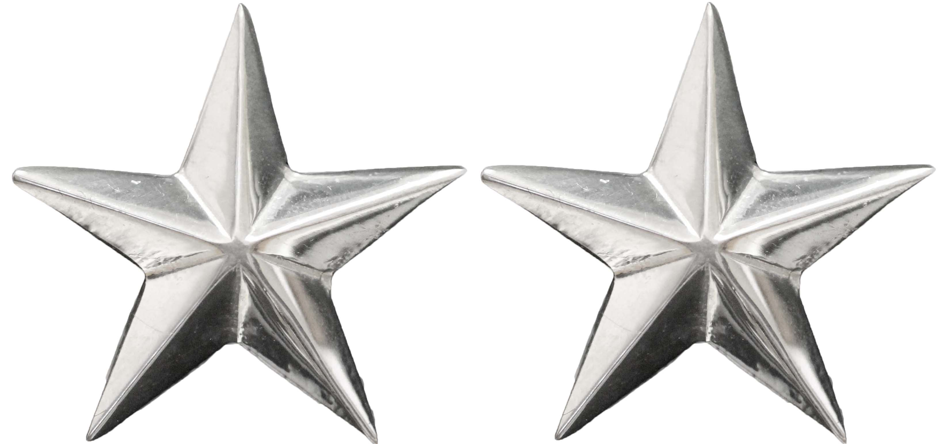 1077- POLISHED STAR EARRINGS